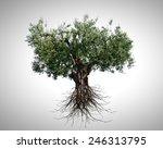 conceptual image of green tree... | Shutterstock . vector #246313795