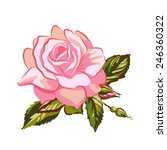 vector pink rose flower | Shutterstock .eps vector #246360322