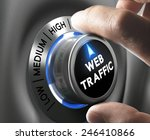 web traffic button pointing... | Shutterstock . vector #246410866