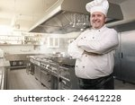 portrait of a happy chef in the ... | Shutterstock . vector #246412228