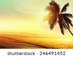 sunset at a tropical beach in... | Shutterstock . vector #246491452