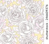 floral seamless pattern.... | Shutterstock .eps vector #246609376