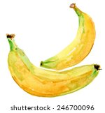 two bananas isolated on white... | Shutterstock .eps vector #246700096