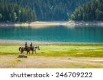 Mountain Patrol On Horses