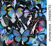 butterfly pattern beautiful... | Shutterstock . vector #246836752