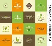 perfect set of vegan and... | Shutterstock .eps vector #246890056