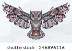 patterned owl on the grunge... | Shutterstock .eps vector #246896116