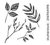 hand drawn vector illustration  ...   Shutterstock .eps vector #246964498