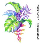abstract tropical leaves and... | Shutterstock . vector #246985852