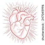 heart on red b | Shutterstock .eps vector #247045996