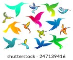 Colorful Silhouettes Of Flying...