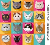 Set Of Flat Popular Breeds Of...