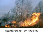 Fire In The Bush. Near Kiev...