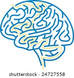 Stock vector vector illustration of brain maze with correct path 24727558