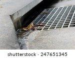 Suburban Storm Water Drain 2