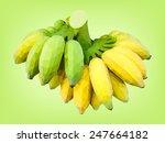 Cultivated Banana Half Ripe An...
