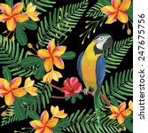 floral pattern with tropical... | Shutterstock . vector #247675756