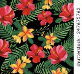 floral pattern with tropical... | Shutterstock . vector #247675762