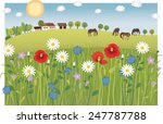 summer meadow | Shutterstock .eps vector #247787788