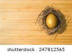 golden egg opportunity with... | Shutterstock . vector #247812565