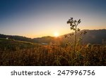 Stock photo sunrise in the mountain 247996756