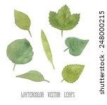 vector set of green watercolor... | Shutterstock .eps vector #248000215