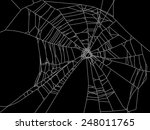 illustration with spider web... | Shutterstock .eps vector #248011765