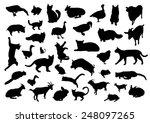 Stock vector animals silhouettes set 248097265
