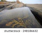 Rock Pool After Low Tide....