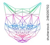 Abstract Polygonal Cat. Cat...