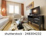 living room interior | Shutterstock . vector #248304232