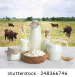 Milk On Wooden Table With Cows...