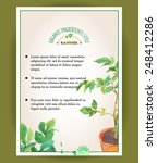 banner with hand painted... | Shutterstock .eps vector #248412286