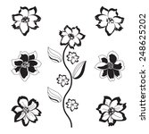 six black and white flowers and ... | Shutterstock .eps vector #248625202