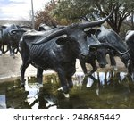 Small photo of Dallas, TX USA January 28, 2015: Pioneer Plaza:: Front view of Longhorn cattle crossing a stream, part of a public 73 piece cattle drive sculpture gifted by Trammel Crow to the city of Dallas