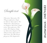background with white callas | Shutterstock .eps vector #24874183