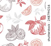 elegant seamless pattern with... | Shutterstock .eps vector #248794216