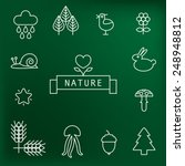 set of cute nature icons.... | Shutterstock .eps vector #248948812