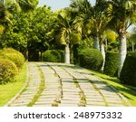 Tropical Garden Design.