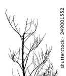 black tree with white background | Shutterstock . vector #249001552