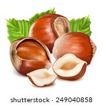 hazelnuts with leaves. photo... | Shutterstock .eps vector #249040858