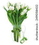 Bouquet Of Fresh  White  Tulip...