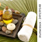 green palm  with health spa | Shutterstock . vector #249159148