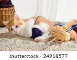 Stock photo six weeks old kitten being naughty with knitting wool 24918577