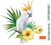 white parrot  hibiscus ...   Shutterstock .eps vector #249386482