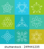 set of simple and graceful... | Shutterstock .eps vector #249441235