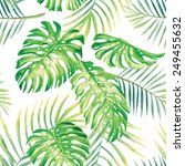 hand drawn watercolor tropic...   Shutterstock .eps vector #249455632