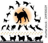 cats collection part 1 of 2 | Shutterstock .eps vector #24950029