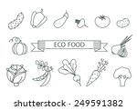 vector illustration of a... | Shutterstock .eps vector #249591382
