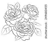 outline black and white roses... | Shutterstock .eps vector #249683455